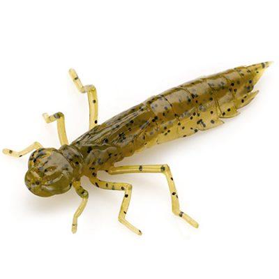 Dragonfly 1,2  green pumpkin seed 074
